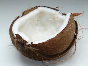 coconut-60395_640